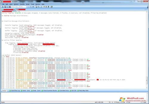 Скриншот программы SecureCRT для Windows XP
