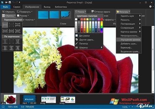 Скриншот программы Snagit для Windows XP