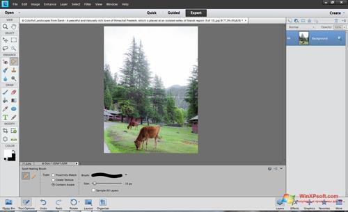 Скриншот программы Photoshop Elements для Windows XP