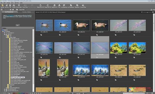 Скриншот программы ViewNX для Windows XP