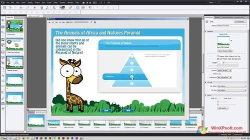 Скриншот программы Adobe Captivate для Windows XP