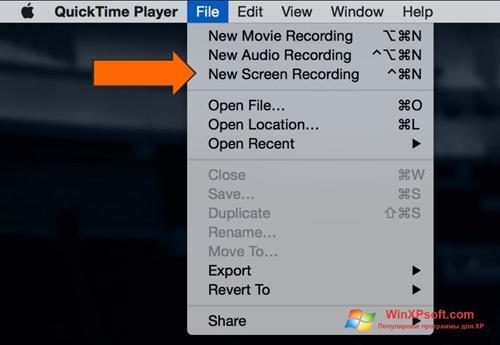 Скриншот программы QuickTime для Windows XP