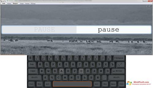 Скриншот программы Stamina для Windows XP