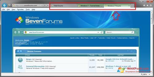 Скриншот программы Internet Explorer для Windows XP