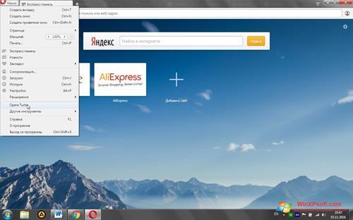 Скриншот программы Opera Turbo для Windows XP