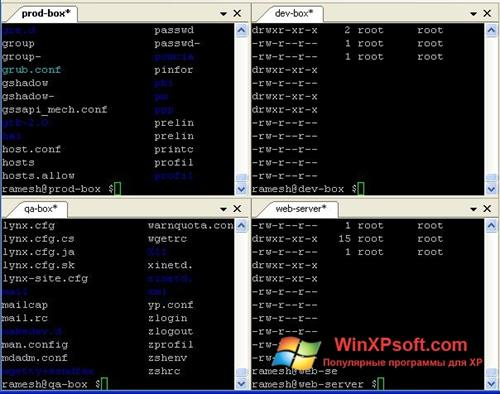 Скриншот программы PuTTY для Windows XP