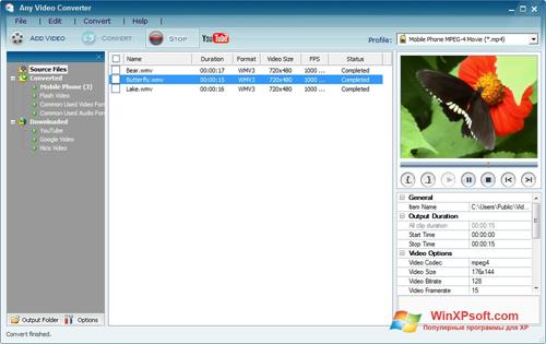 Скриншот программы Any Video Converter для Windows XP