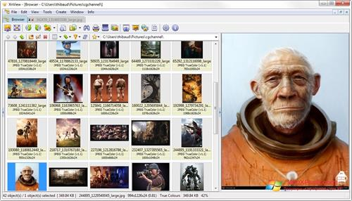 Скриншот программы XnView для Windows XP