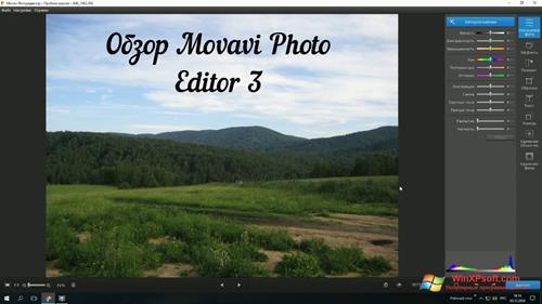 Скриншот программы Movavi Photo Editor для Windows XP