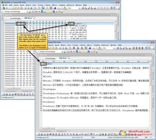 Скриншот программы UltraEdit для Windows XP