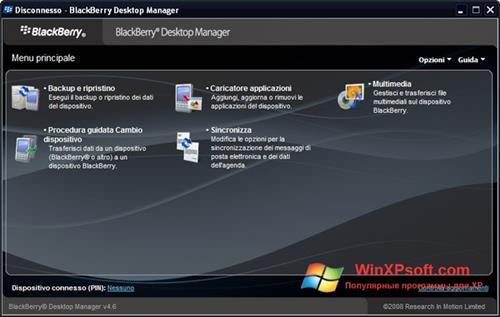 Скриншот программы BlackBerry Desktop Manager для Windows XP