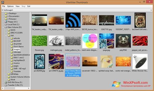 Скриншот программы IrfanView для Windows XP