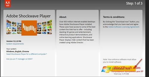 Скриншот программы Adobe Shockwave Player для Windows XP