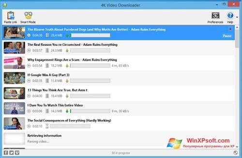 Скриншот программы 4K Video Downloader для Windows XP