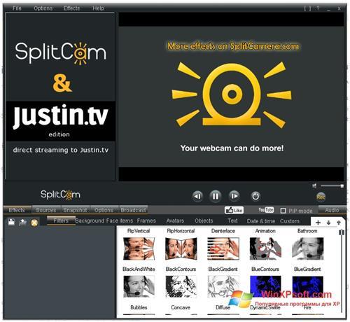 Скриншот программы SplitCam для Windows XP