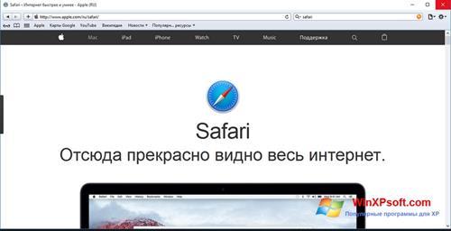 Скриншот программы Safari для Windows XP
