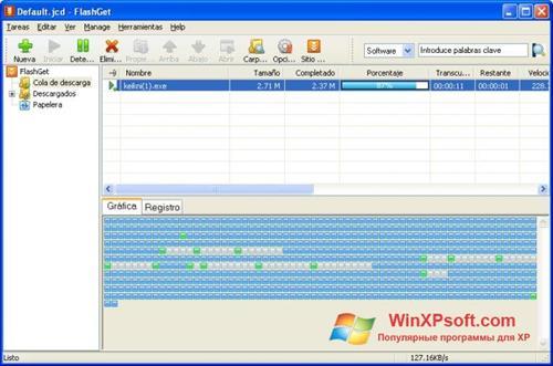Скриншот программы FlashGet для Windows XP