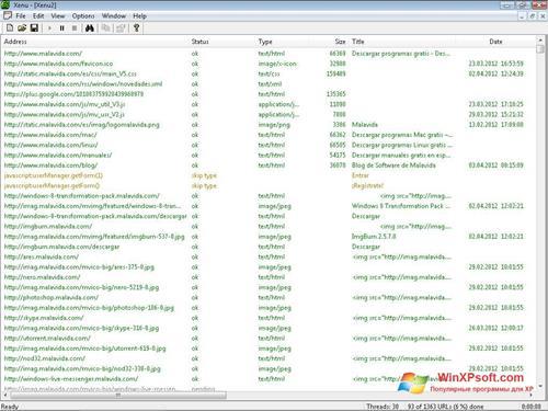 Скриншот программы Xenu для Windows XP