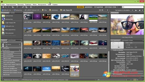 Скриншот программы Adobe Bridge для Windows XP