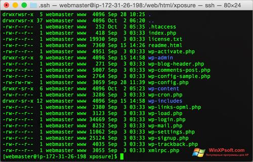 Скриншот программы Wget для Windows XP