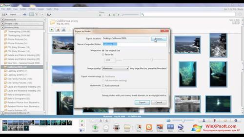 Скриншот программы Picasa для Windows XP