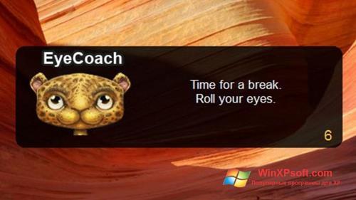 Скриншот программы EyeLeo для Windows XP