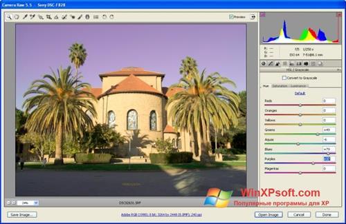 Скриншот программы Adobe Camera Raw для Windows XP