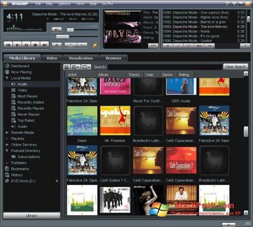 Скриншот программы Winamp для Windows XP