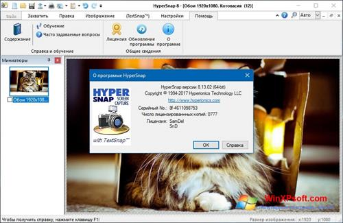 Скриншот программы HyperSnap для Windows XP