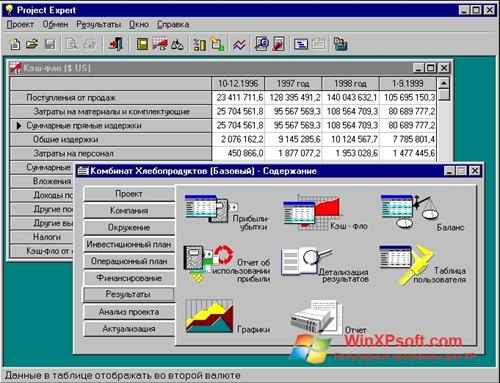 Скриншот программы Project Expert для Windows XP