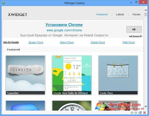 Скриншот программы XWidget для Windows XP