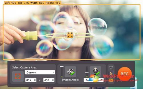 Скриншот программы Movavi Screen Capture для Windows XP