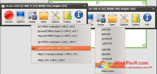 Скриншот программы oCam Screen Recorder для Windows XP