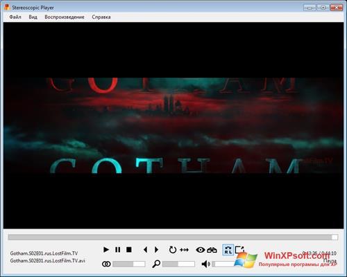 Скриншот программы Stereoscopic Player для Windows XP