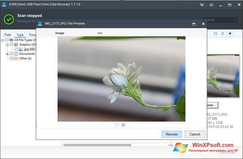 Скриншот программы USB Flash Drive Recovery для Windows XP