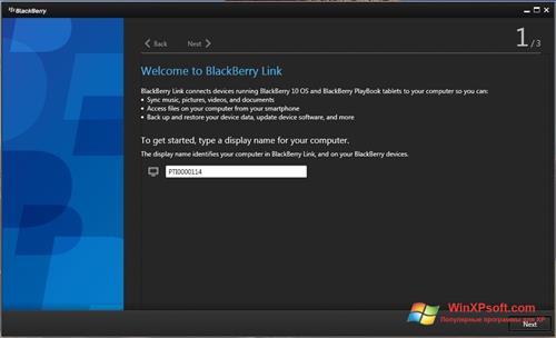 Скриншот программы BlackBerry Link для Windows XP