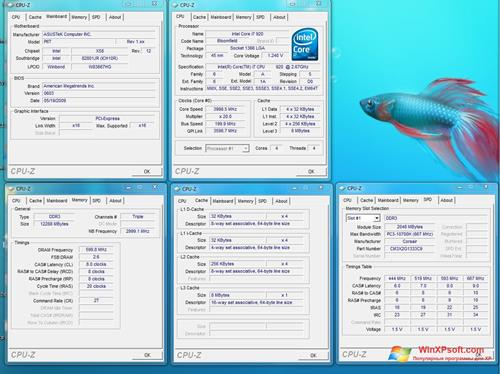 Скриншот программы CPU-Z для Windows XP