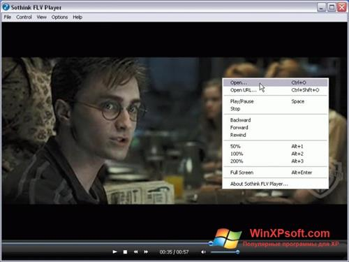 Скриншот программы FLV Player для Windows XP