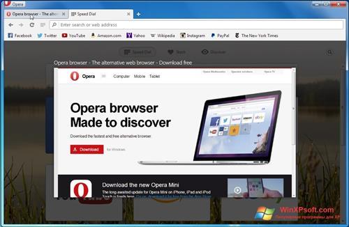 Скриншот программы Opera Developer для Windows XP