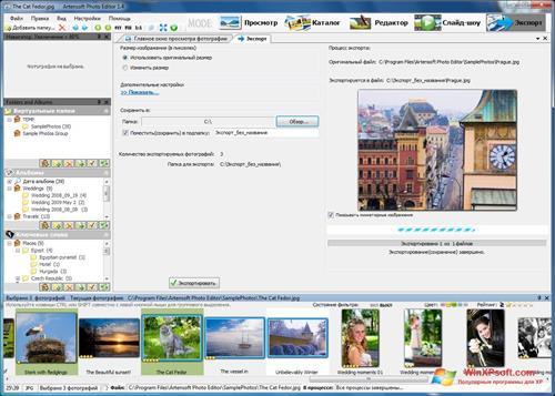 Скриншот программы Редактор фотографий для Windows XP