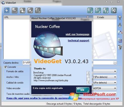 Скриншот программы VideoGet для Windows XP