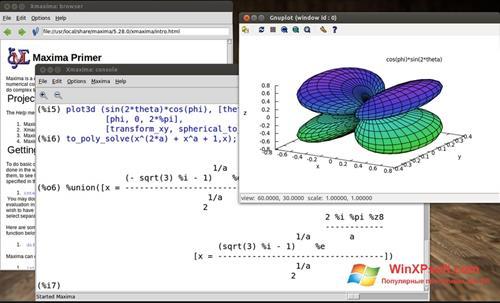 Скриншот программы Maxima для Windows XP