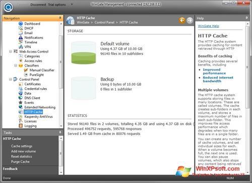 Скриншот программы WinGate для Windows XP