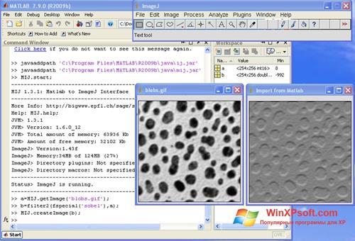 Скриншот программы ImageJ для Windows XP