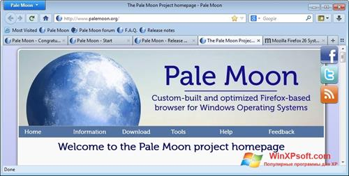Скриншот программы Pale Moon для Windows XP