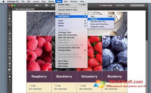Скриншот программы Adobe InDesign для Windows XP