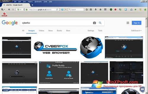 Скриншот программы Cyberfox для Windows XP