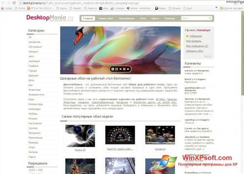 Скриншот программы DesktopMania для Windows XP