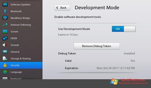 Скриншот программы Adobe AIR для Windows XP