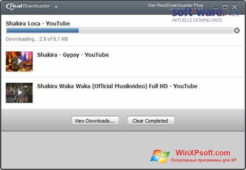 Скриншот программы RealDownloader для Windows XP